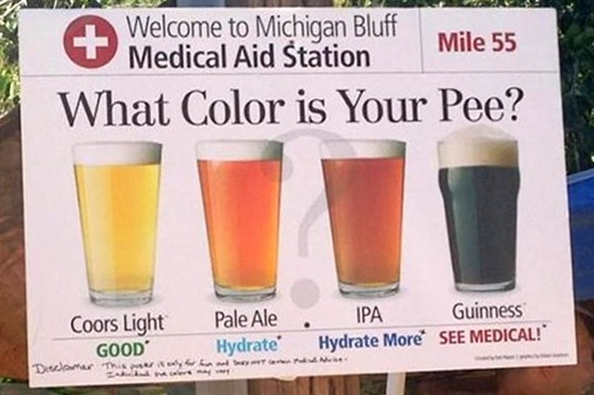 20140804 - Beer hydration chart